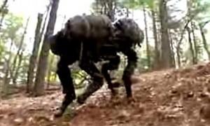 The BigDog Robotic Dog