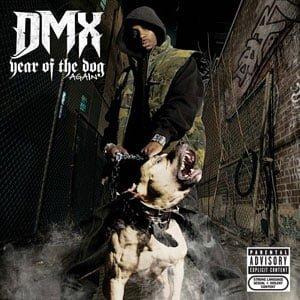 dmx-dog