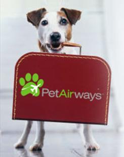 pet-airways