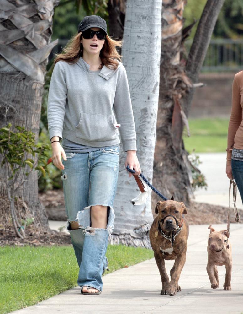 Jessica Biel walking dog