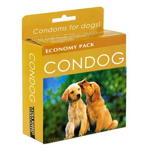 condog