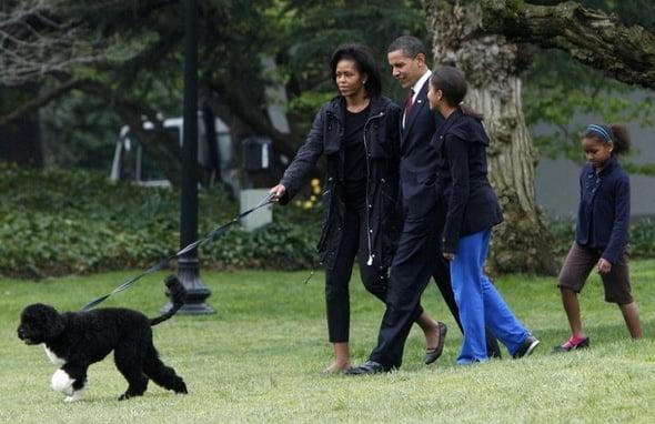 obamas-dog-bo