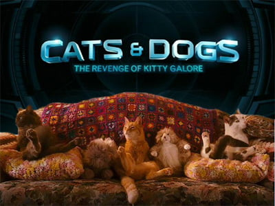 Cats-and-Dogs-2