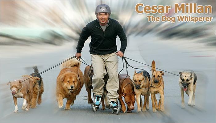 Cesar Millan-dog-whisper