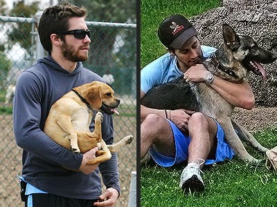 Jake Gyllenhaal and his dogs
