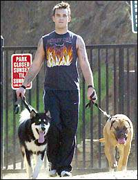 Robbie and his dogs