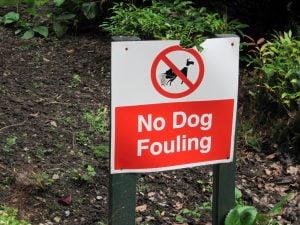 dog fouling