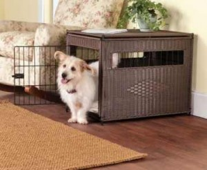 puppy-crate-training