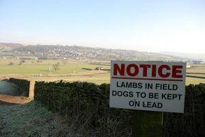 cross hills north yorkshire