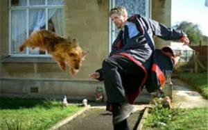 postman-tackles-dog