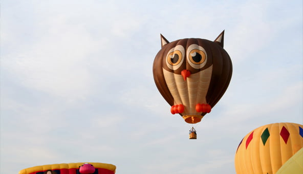 What to Do if Your Dog is Confronted by a Hot Air Balloon